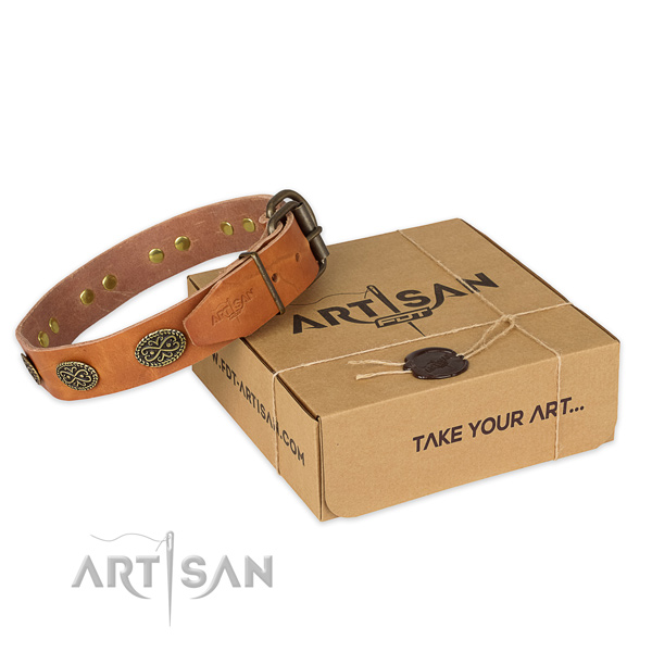 Rust resistant traditional buckle on natural genuine leather collar for your beautiful dog