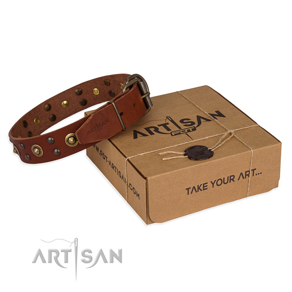 Corrosion proof buckle on full grain natural leather collar for your impressive canine