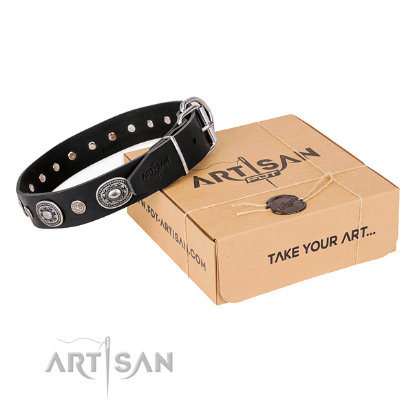 Best quality genuine leather dog collar handcrafted for everyday walking