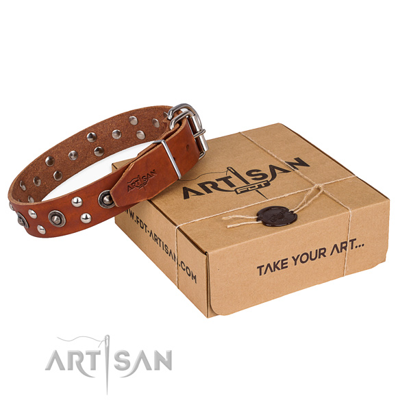 Rust resistant fittings on full grain leather collar for your lovely four-legged friend