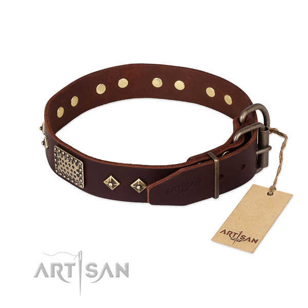 Full grain leather dog collar with rust-proof buckle and adornments