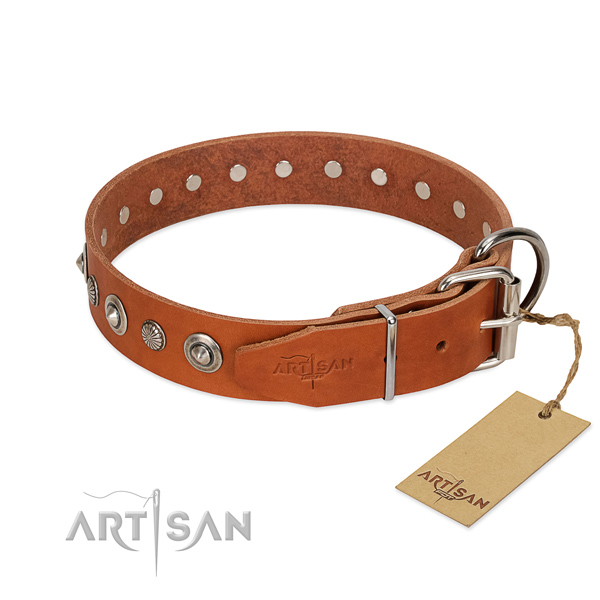 Finest quality full grain genuine leather dog collar with trendy adornments