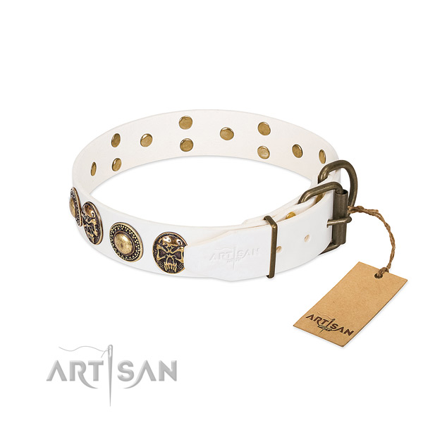 Rust-proof traditional buckle on everyday walking dog collar