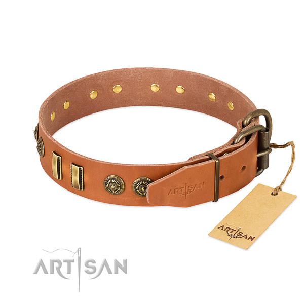 Corrosion resistant decorations on natural leather dog collar for your four-legged friend