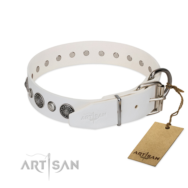 Quality leather dog collar with rust resistant fittings