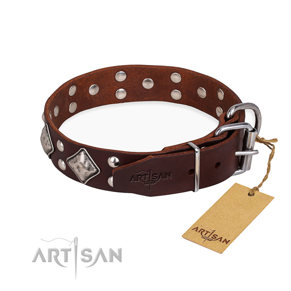 Full grain genuine leather dog collar with amazing rust resistant adornments
