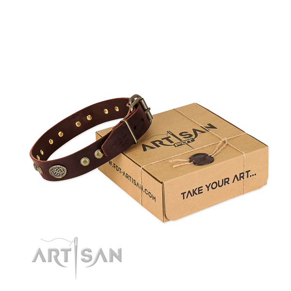 Rust resistant decorations on Genuine leather dog collar for your doggie