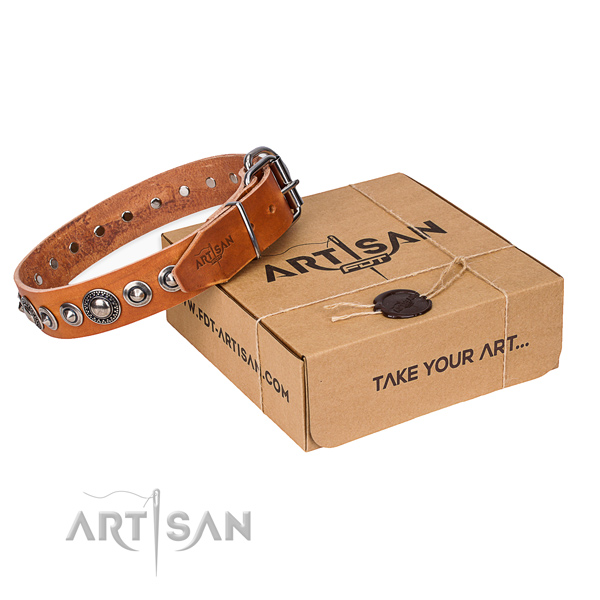 Leather dog collar made of quality material with rust resistant hardware