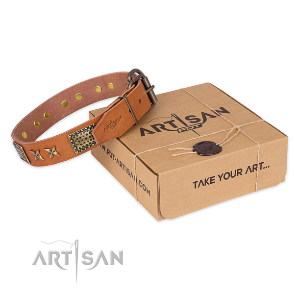Corrosion resistant fittings on leather collar for your handsome canine