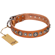 """Daily Chic"" FDT Artisan Tan Leather dog Collar with Decorations"