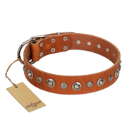 """Gorgeous Roundie"" FDT Artisan Tan Leather dog Collar with Chrome-plated Circles"