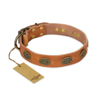 """Magic Amulet"" FDT Artisan Tan Leather dog Collar with Oval Studs"