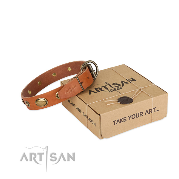 Rust-proof embellishments on leather dog collar for your canine