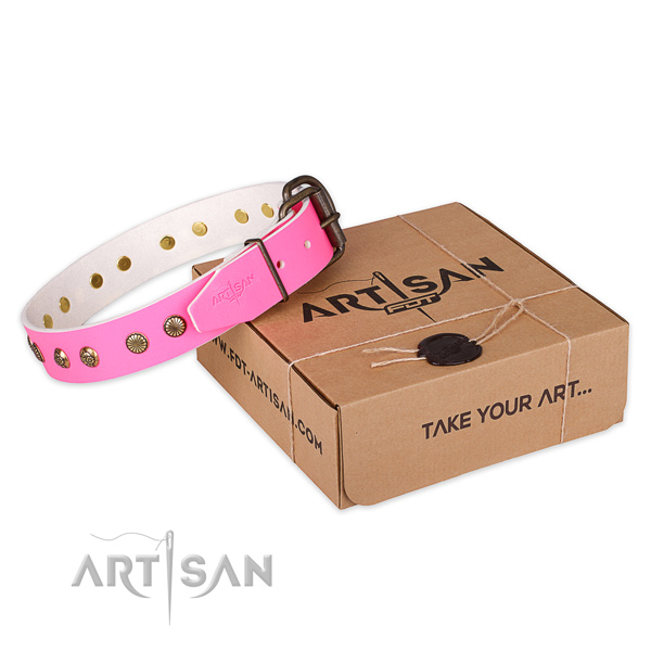 Strong hardware on leather collar for your attractive doggie