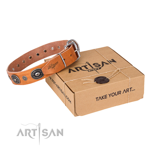 Gentle to touch full grain leather dog collar made for basic training