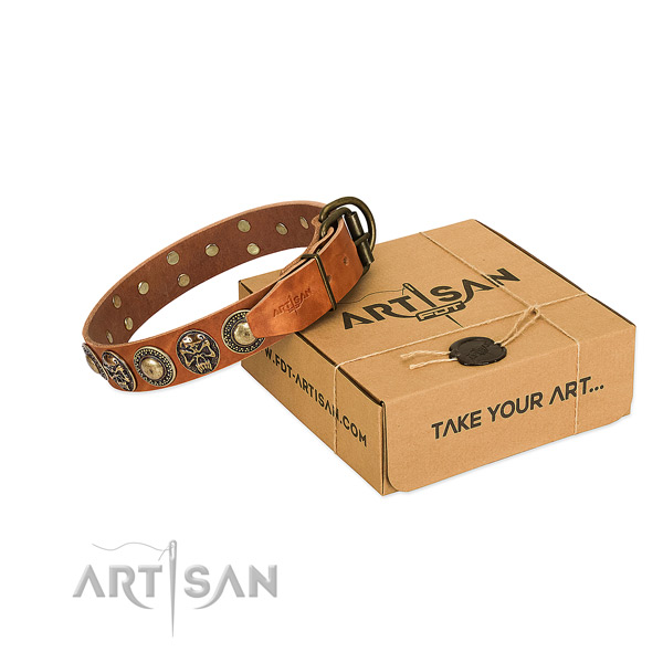 Rust-proof traditional buckle on dog collar for everyday use