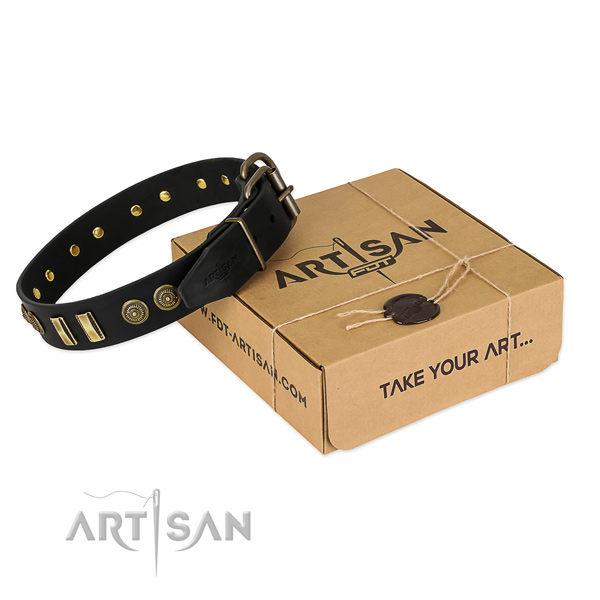 Corrosion proof adornments on natural leather dog collar for your doggie