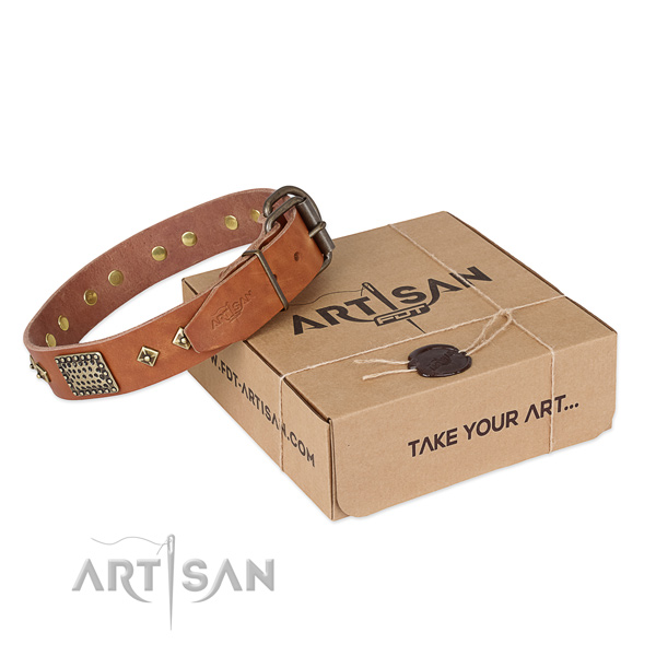 Fine quality leather collar for your stylish pet