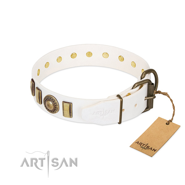 Significant full grain natural leather dog collar with durable buckle