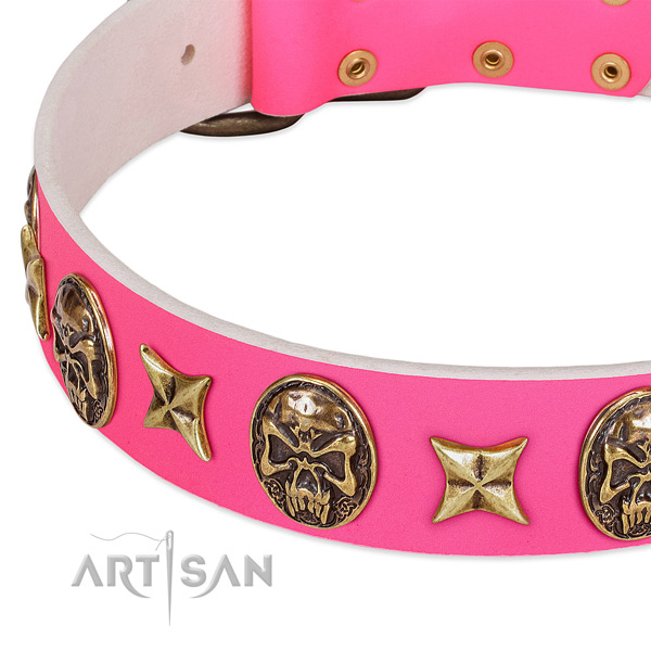 Genuine leather dog collar with incredible embellishments