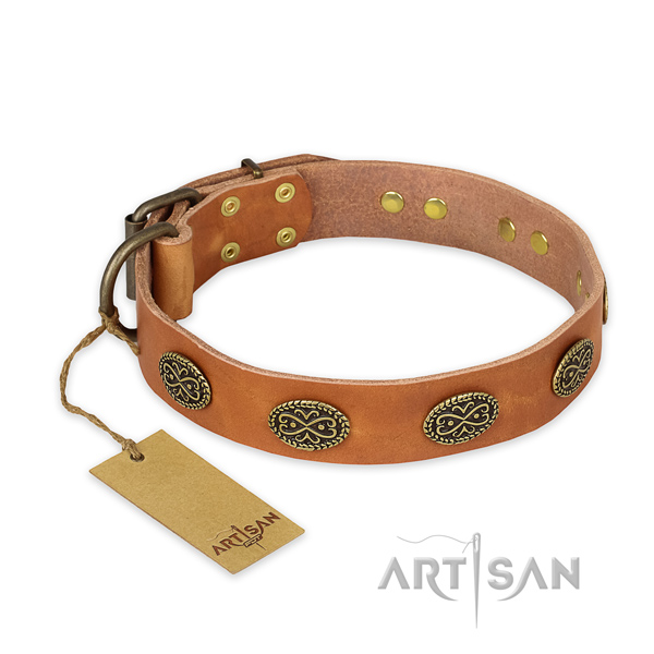Studded full grain genuine leather dog collar with strong fittings