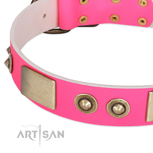 Rust resistant adornments on genuine leather dog collar for your doggie