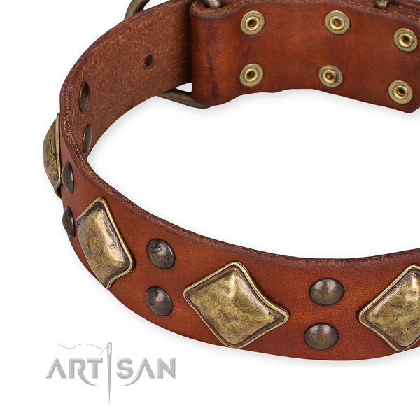 Full grain genuine leather collar with rust-proof hardware for your handsome four-legged friend