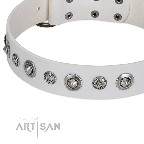 Leather collar with corrosion resistant fittings for your attractive doggie