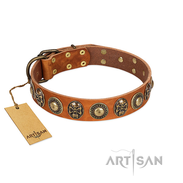 Easy wearing natural leather dog collar for everyday walking your canine