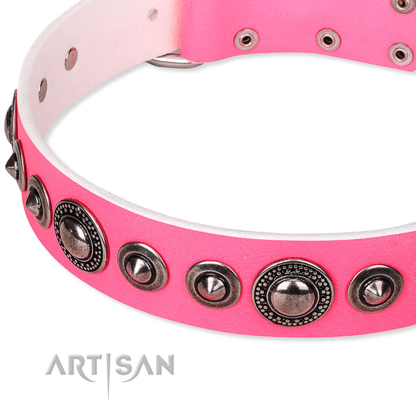Stylish walking studded dog collar of fine quality full grain leather