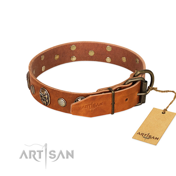 Corrosion proof buckle on genuine leather collar for fancy walking your canine