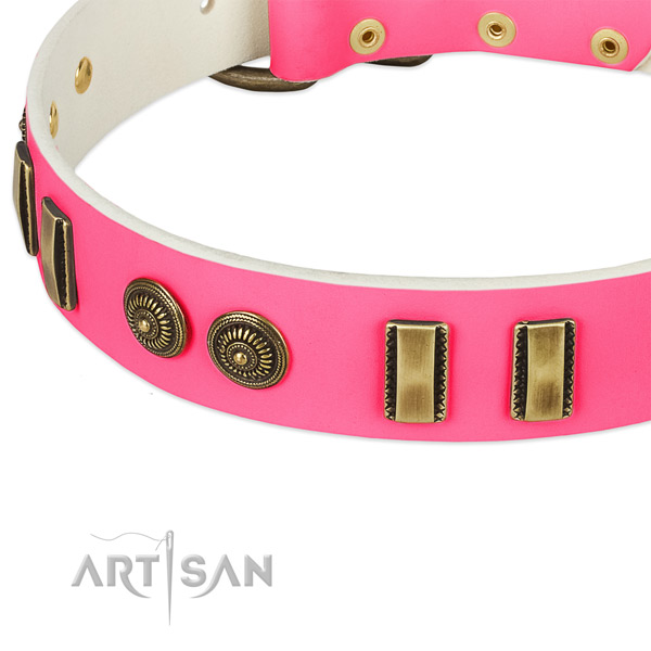 Durable embellishments on genuine leather dog collar for your canine