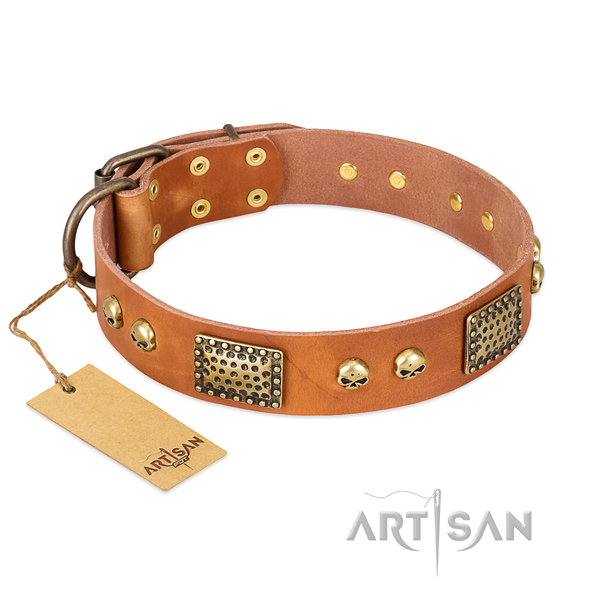 Easy to adjust natural leather dog collar for daily walking your four-legged friend