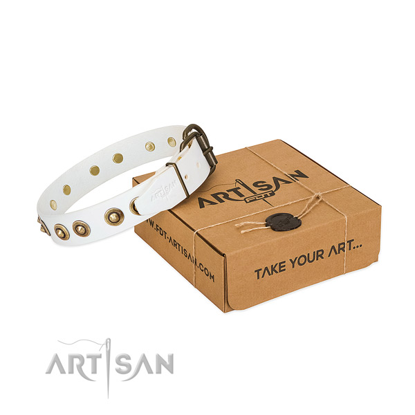 Durable fittings on full grain natural leather dog collar for your canine