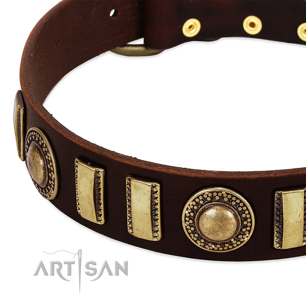 Gentle to touch leather dog collar with corrosion resistant buckle
