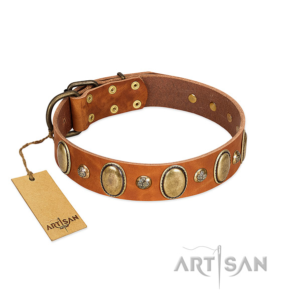 Full grain leather dog collar of gentle to touch material with top notch adornments