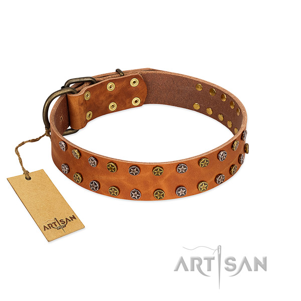 Easy wearing reliable natural leather dog collar with decorations