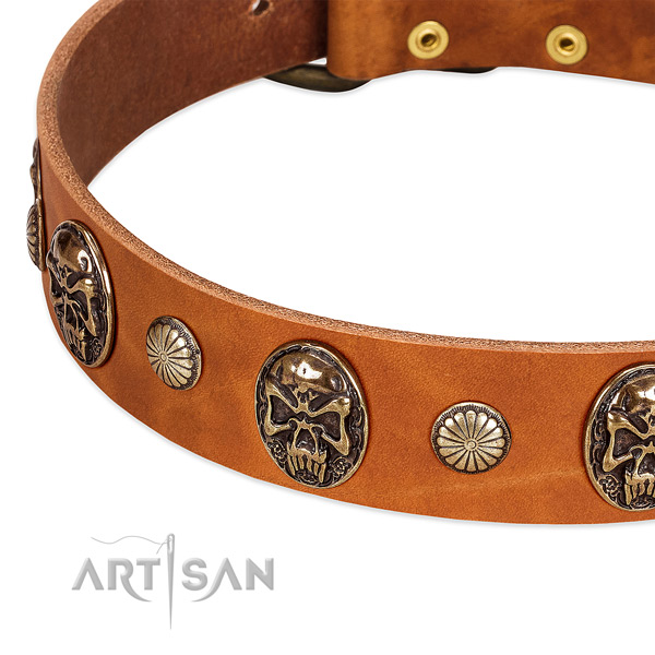 Rust resistant D-ring on genuine leather dog collar for your four-legged friend