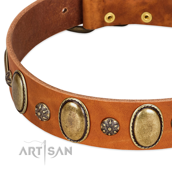 Everyday walking gentle to touch genuine leather dog collar