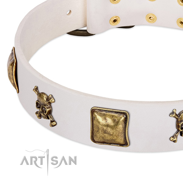 Extraordinary natural leather dog collar with durable adornments