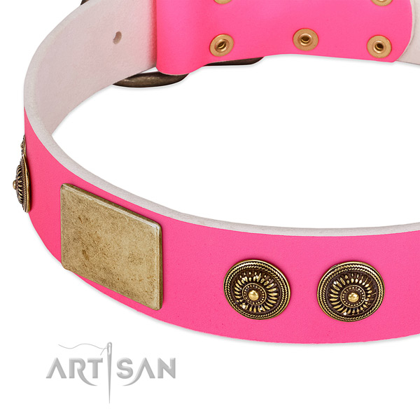 Easy adjustable dog collar made for your beautiful doggie
