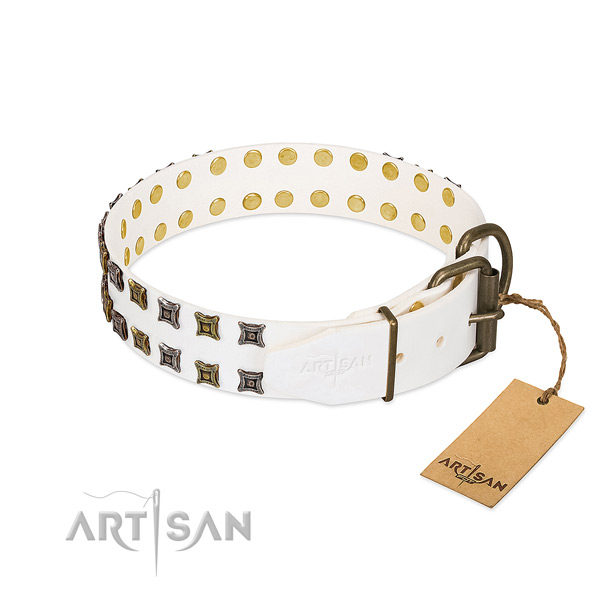 Natural leather collar with unique studs for your pet