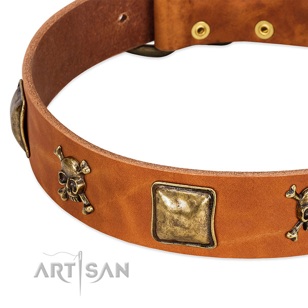 Stylish design embellishments on full grain natural leather collar for your four-legged friend