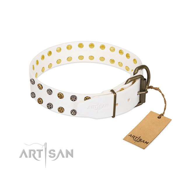Full grain natural leather collar with stylish design embellishments for your doggie