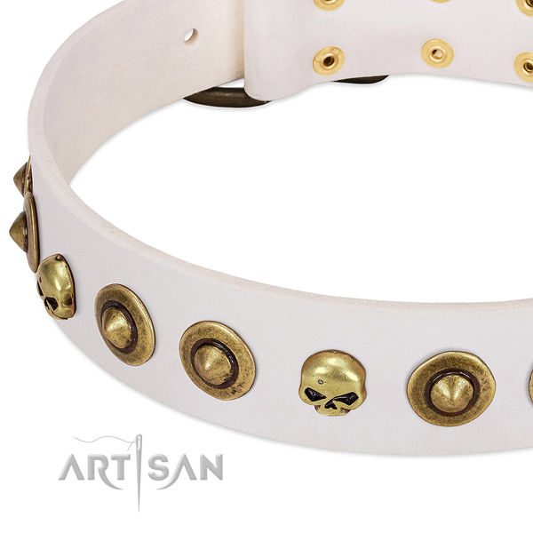 Exceptional decorations on leather collar for your pet