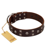 """Brown Shadow"" Designer Handmade FDT Artisan Brown Leather dog Collar"