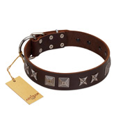 """Needle Stories"" Modern FDT Artisan Brown Leather dog Collar with Square Engraved Plates and Four-Point Stars"