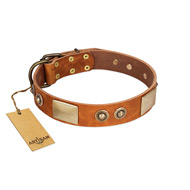 """Perfect Blend"" FDT Artisan Tan Leather dog Collar 1 1/2 inch (40 mm) wide"