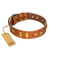 """Egyptian Script"" FDT Artisan Tan Leather dog Collar with Plates and Small Studs"