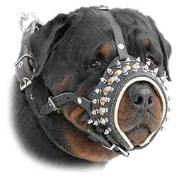 K9 Dogs Leather Decorated With Studs And Spikes Muzzle